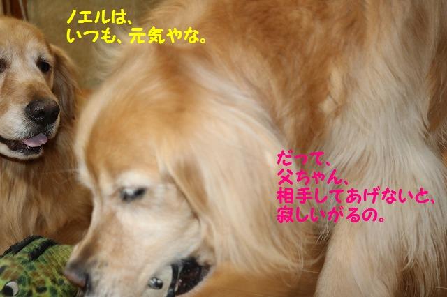 IMG_4637.jpg