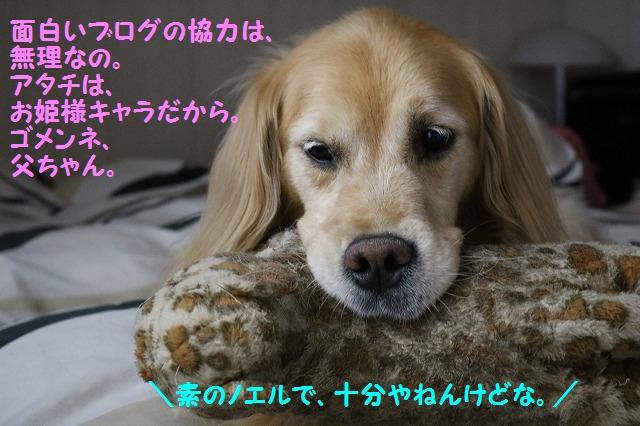 IMG_5069.jpg