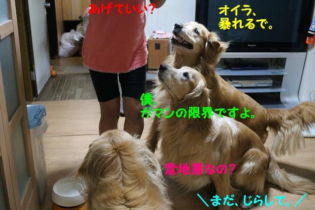 IMG_5169.jpg