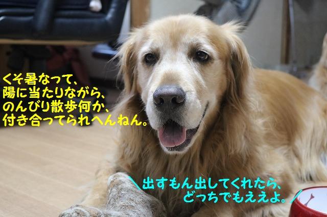 IMG_5578.jpg