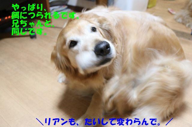 IMG_6660.jpg