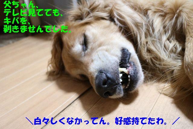IMG_6924.jpg