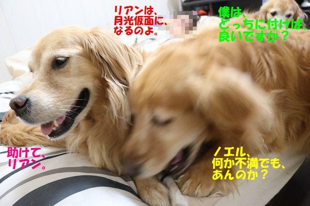 IMG_7415.jpg