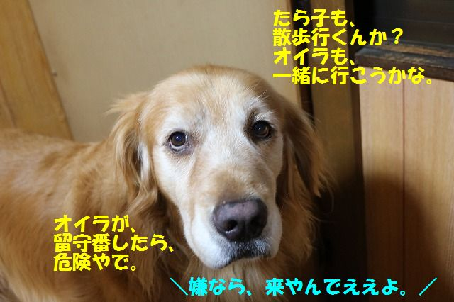 IMG_7736.jpg