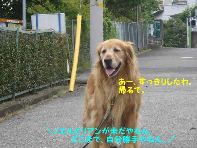 IMG_8473.jpg