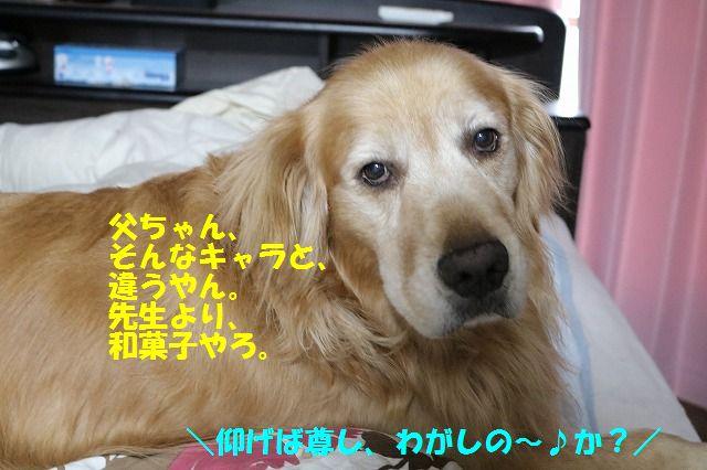 IMG_8756.jpg