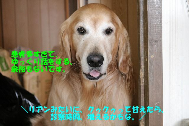 IMG_9084.jpg