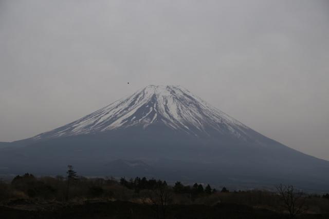 朝霧IMG_1117 (640x427)