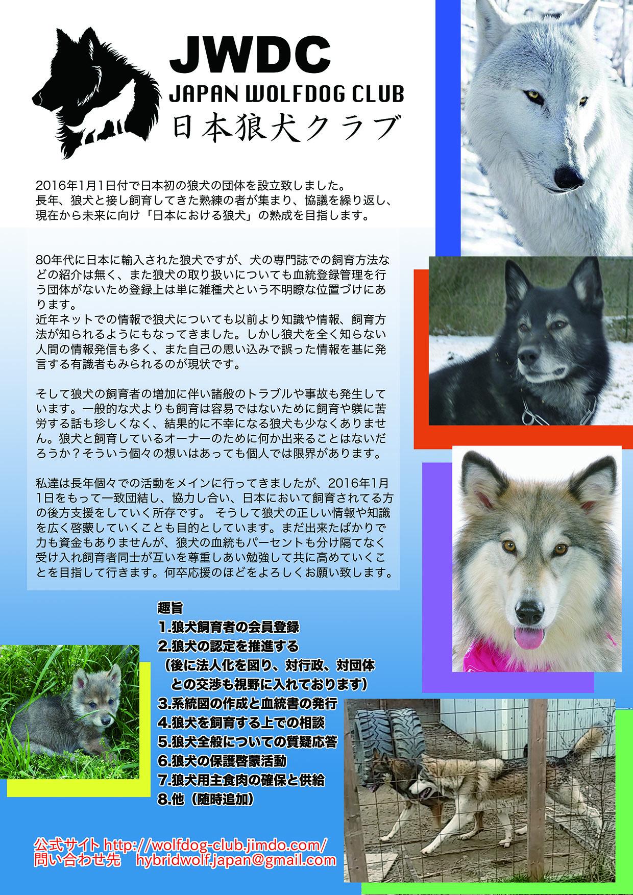 2016_SERIORS STORY 日本狼犬クラブ_01