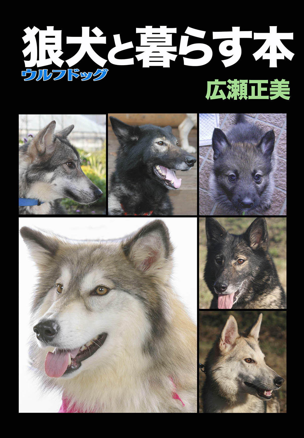 2016_SERIORS STORY 日本狼犬クラブ_02