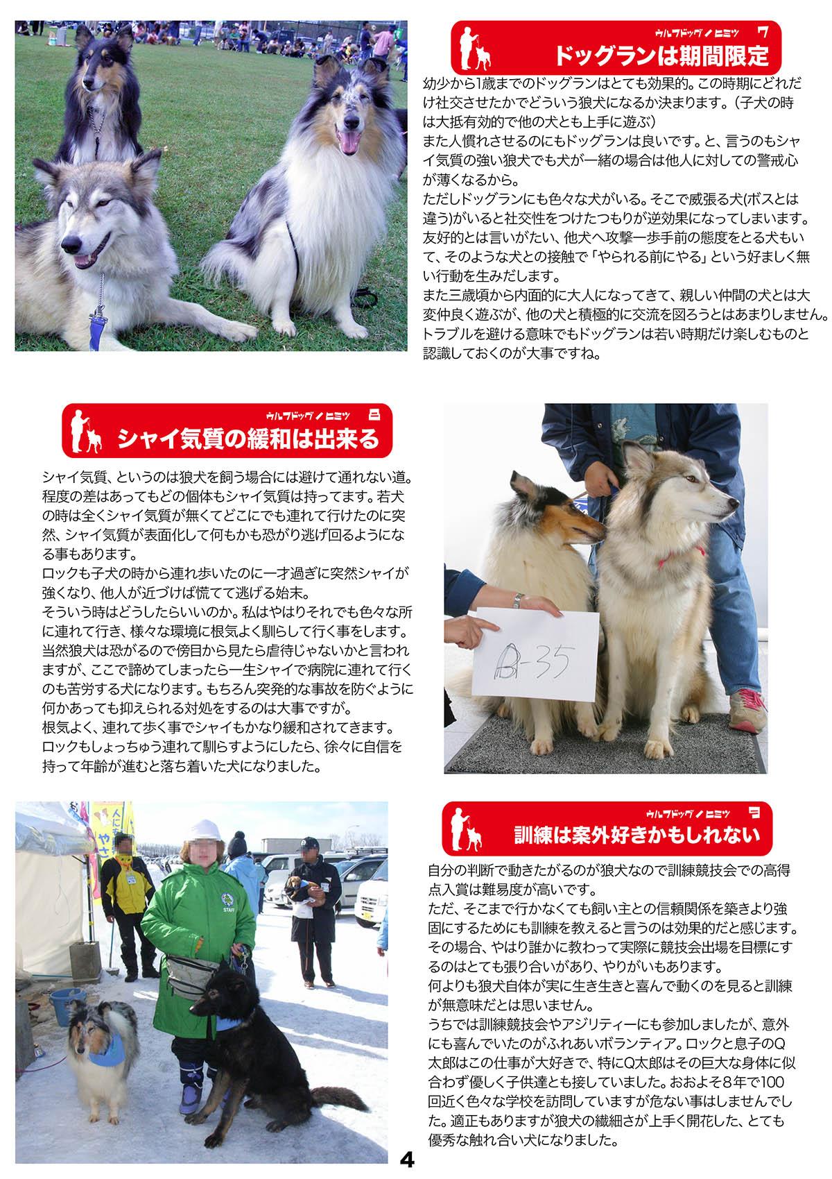 2016_SERIORS STORY 日本狼犬クラブ_06