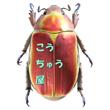 2016_こうちゅう屋_logo