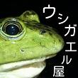 2016_ウシガエル屋ナベセチカー_logo