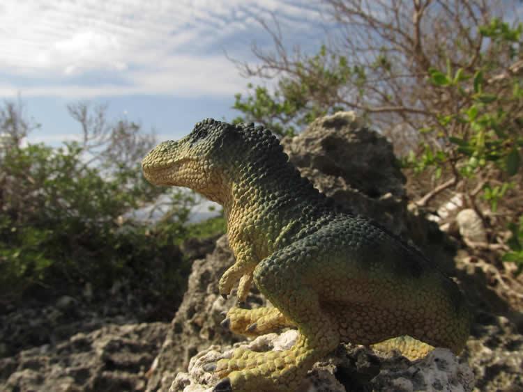 2016_恐竜の島_05