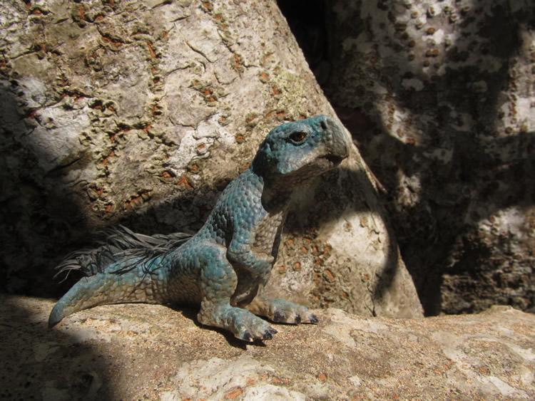 2016_恐竜の島_06