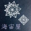 2016_海宙屋-misoraya-_logo