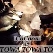2016_CoCoonTOWA TOWA TO_logo