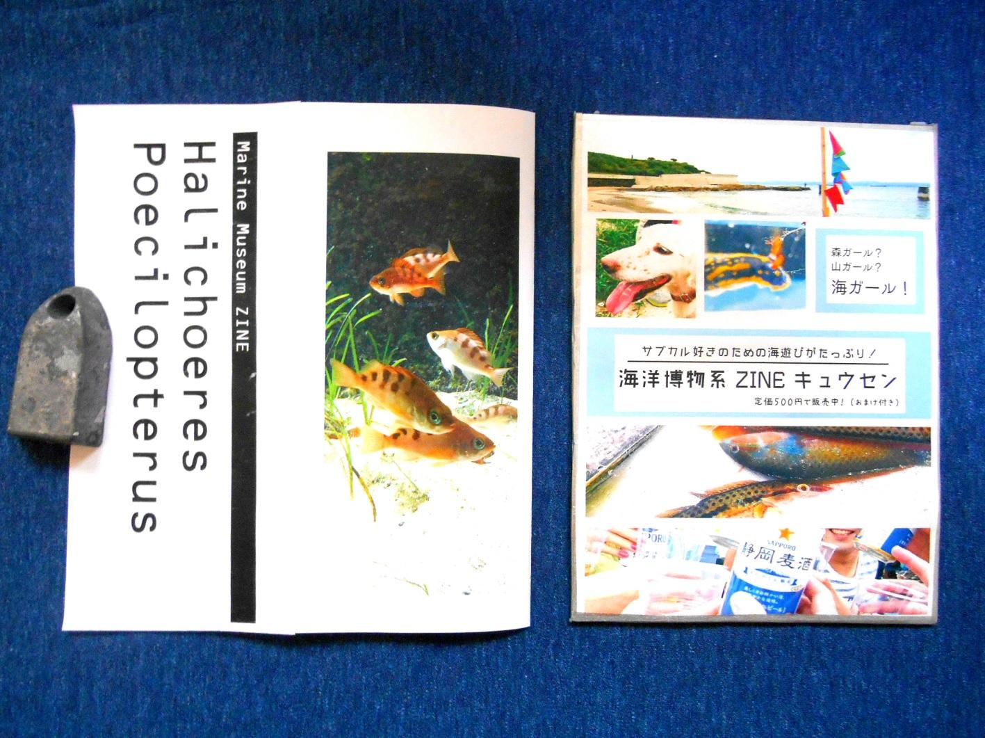 2016_海洋博物系ZINE キュウセン_03