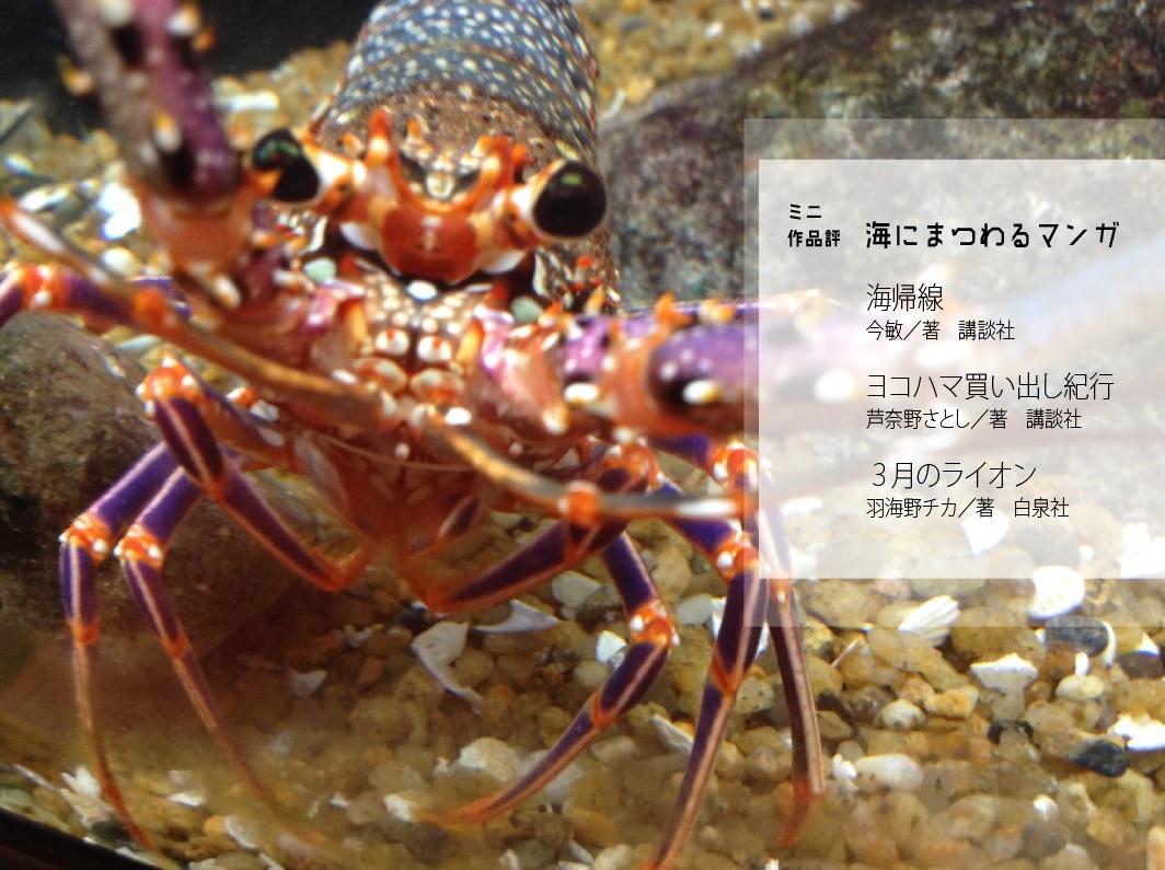 2016_海洋博物系ZINE キュウセン_05