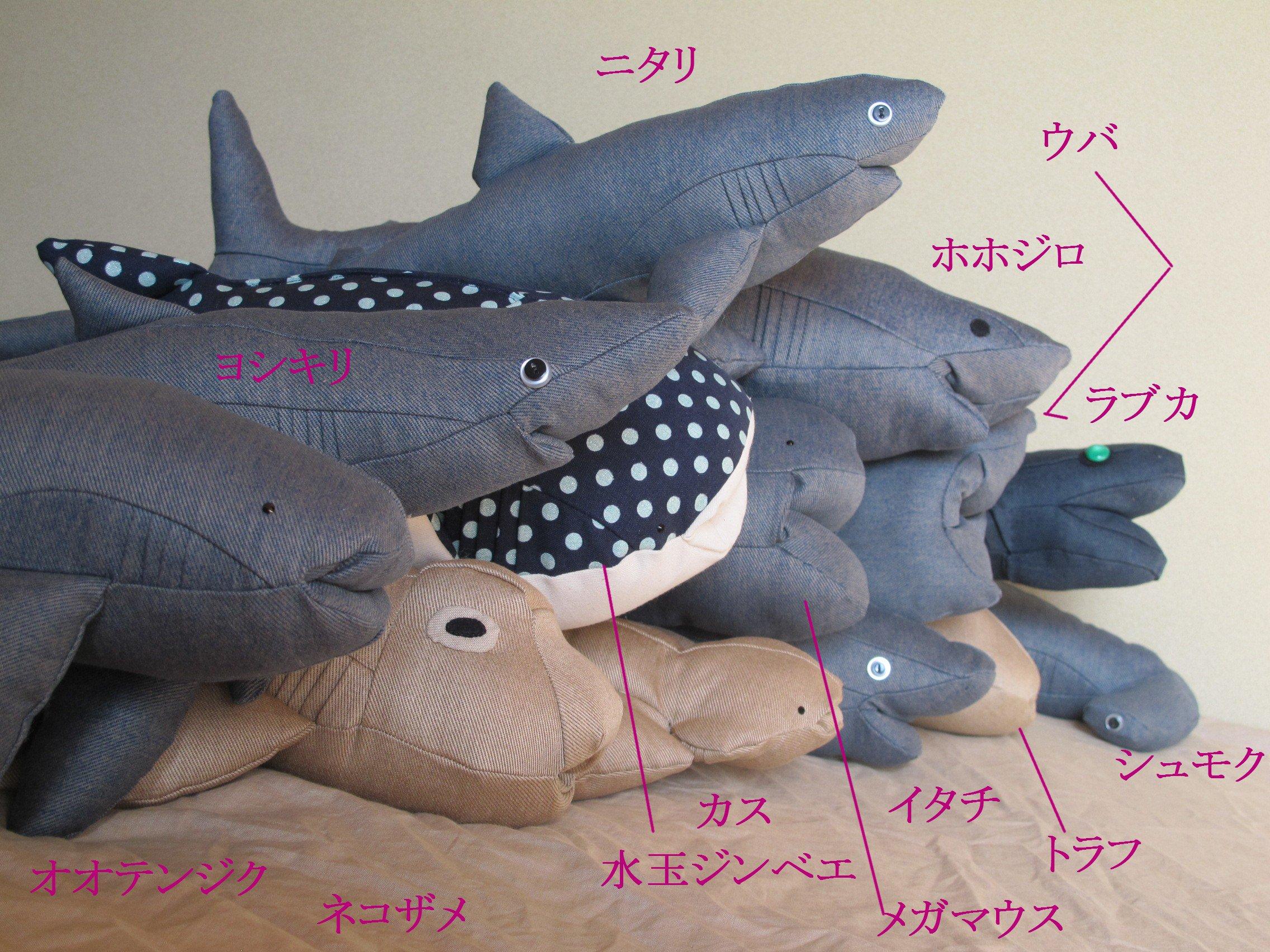 2016_サメとか。_08