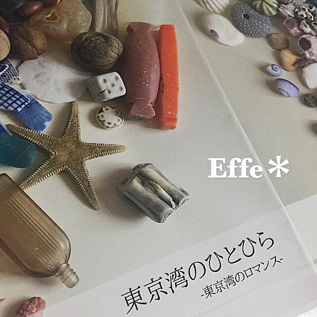 2016ガクタメ_Effe_01