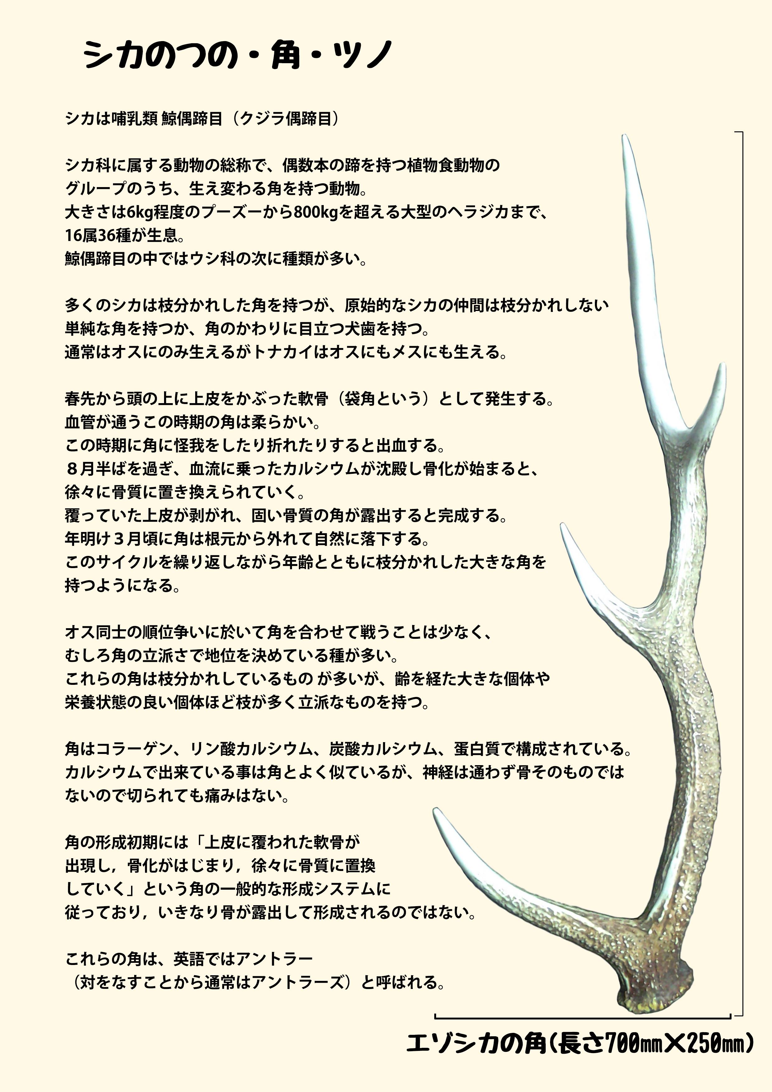 2016ガクタメ_Fenrir-ulfr_01