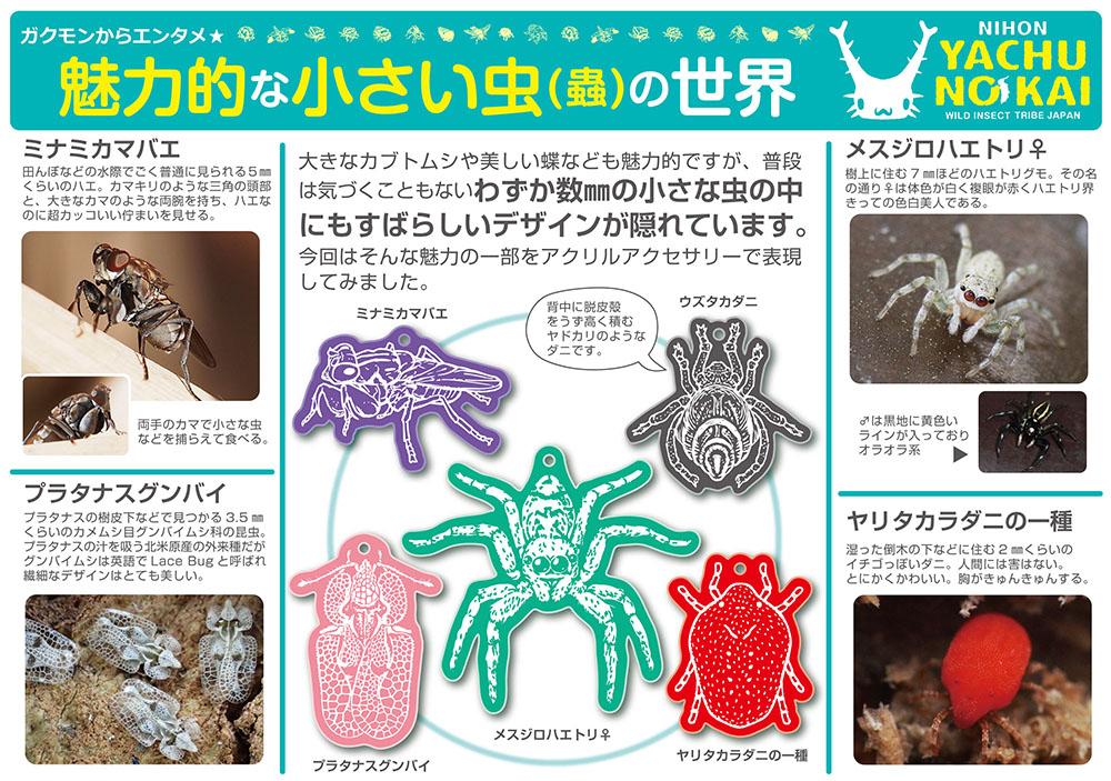 2016ガクタメ_日本野虫の会_01