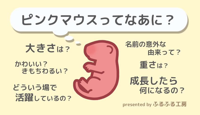 2016ガクタメ_有象無象堂&ふるふる工房_02