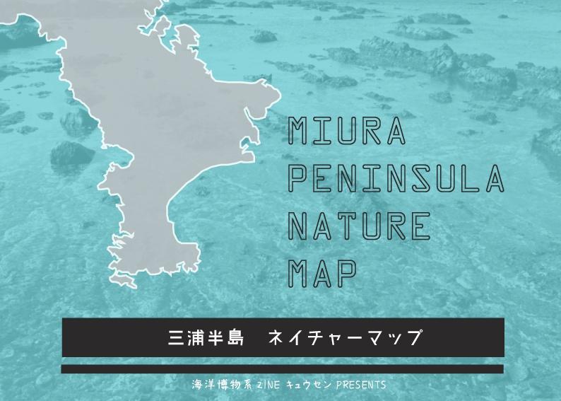 2016ガクタメ_海洋博物系ZINE キュウセン_01