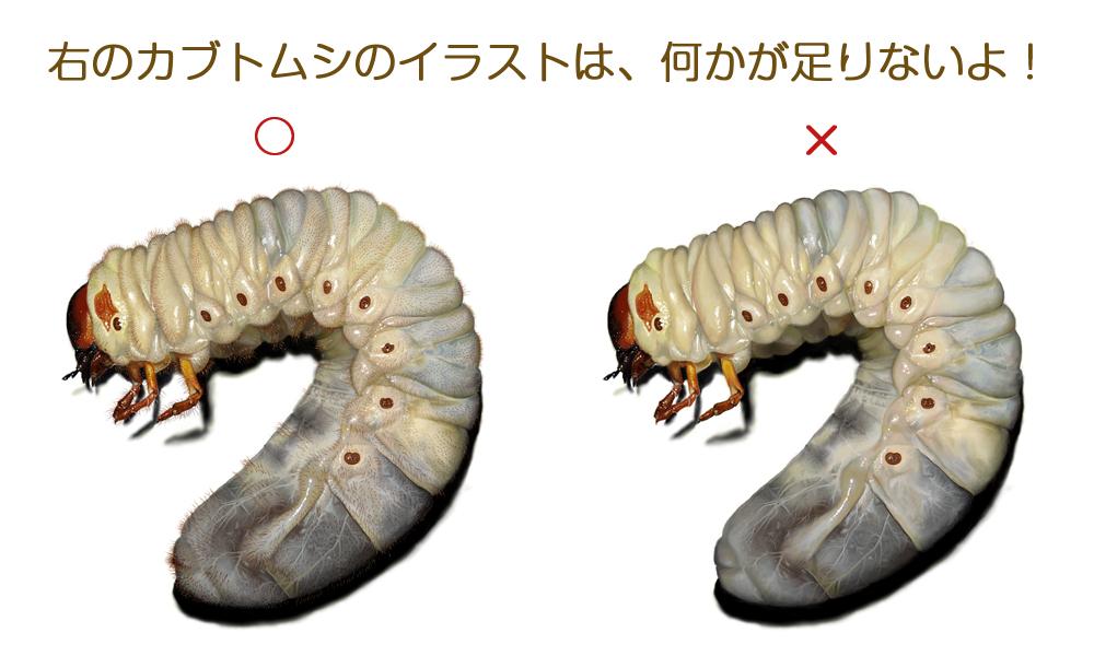 2016ガクタメ_横山拓彦_01