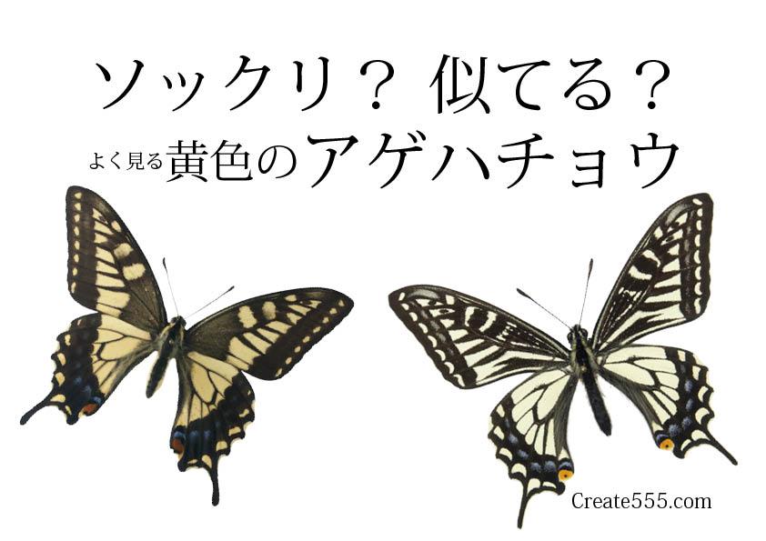 2016ガクタメ_create555_01