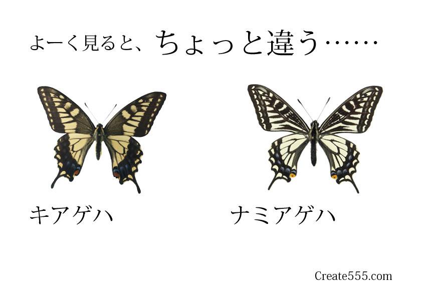 2016ガクタメ_create555_02