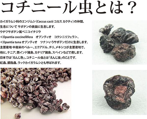 2016ガクタメ_蓼虫忘辛会_01
