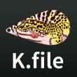 2016_Kfile_logo.jpg
