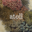 2016_atoll_logo.jpg