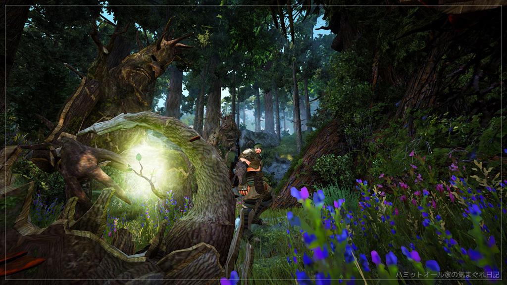 エントの森にて。