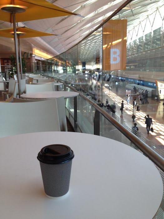 羽田空港でひと休み