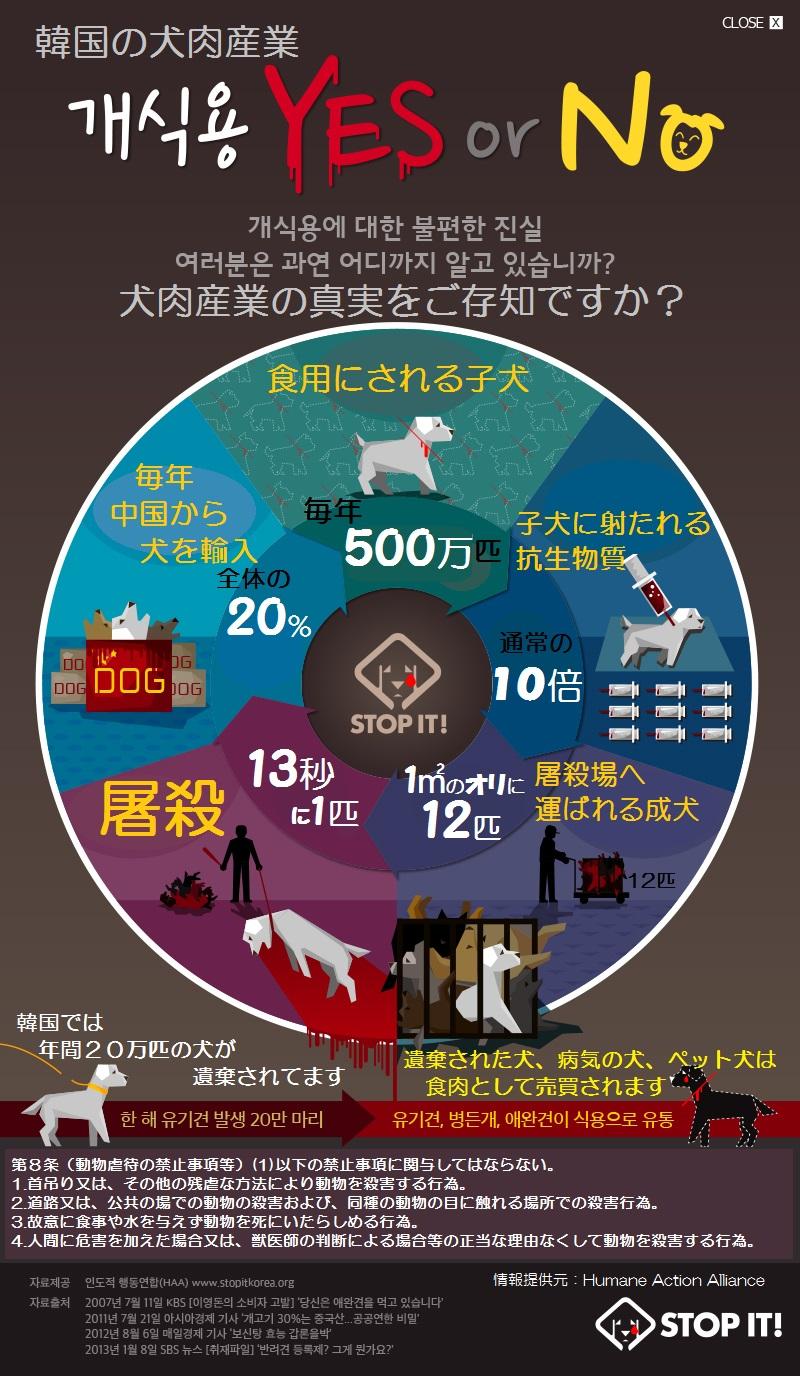 haa_popup2-1日本語ポスター