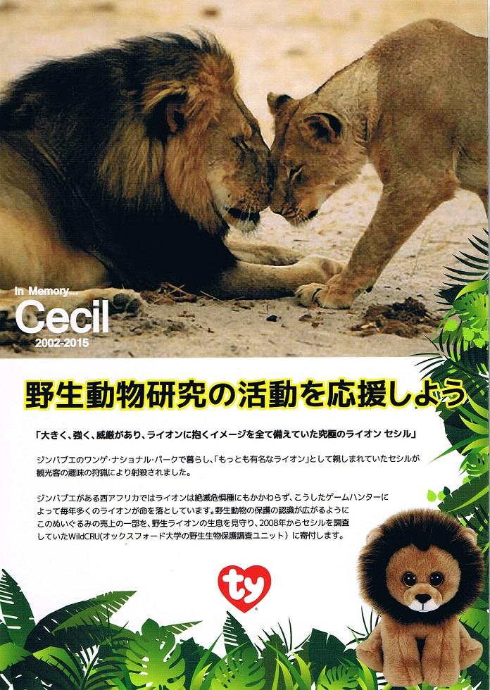cecil-4.jpg