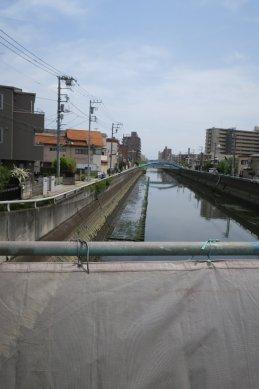 真間川(新川)