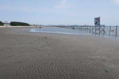 海浜公園1