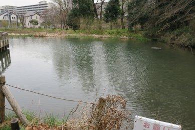 姿見の池・イメージ復元