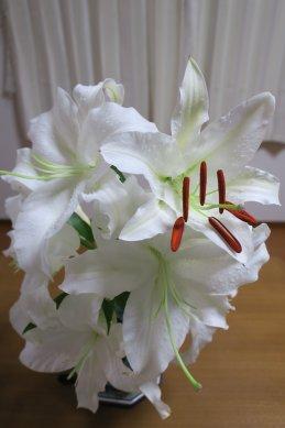 最後の花開く