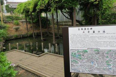 二子藤の池