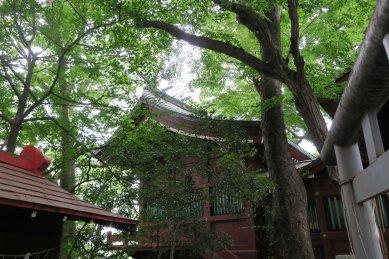 駒繋神社・本殿