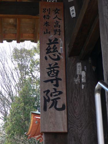 kudoyama2804003_R.jpg