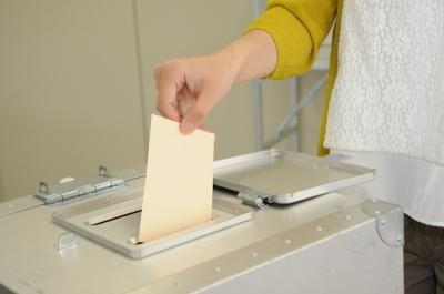 Voting_Scene.jpg