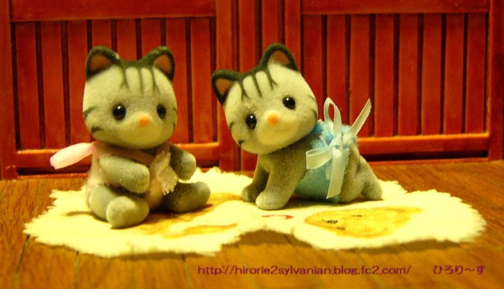 グレーシマネコ 双子ちゃん
