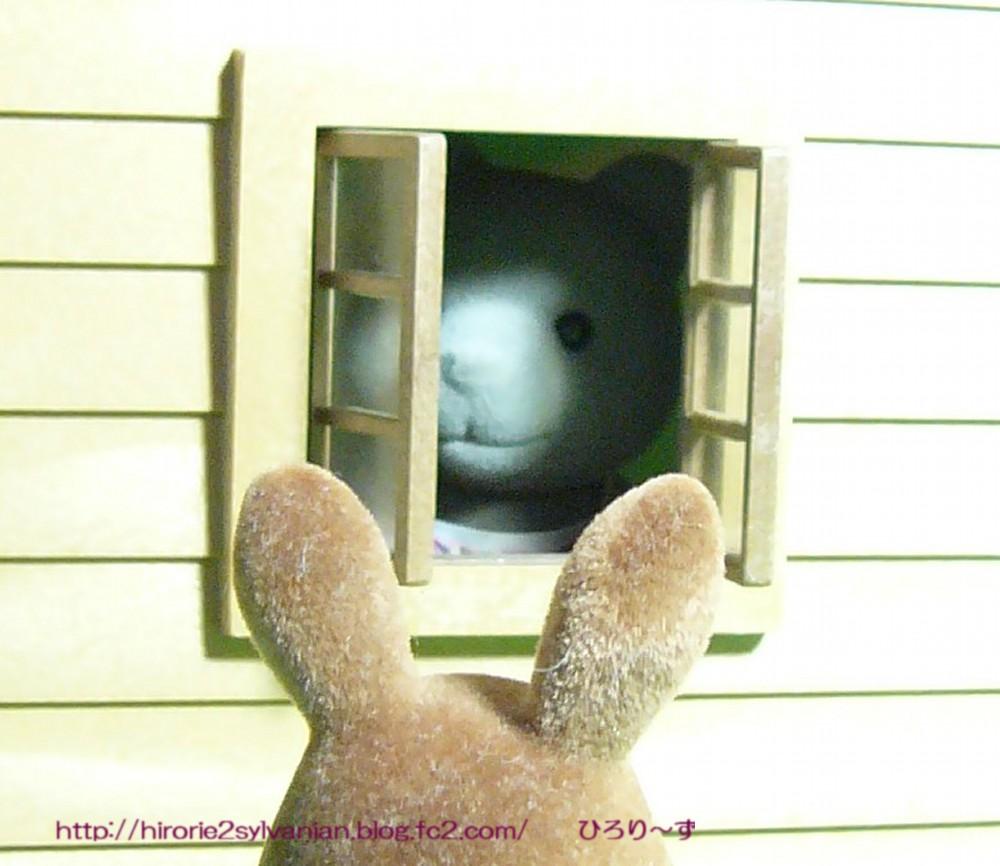 デラックスハウス窓クマ