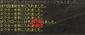 50て・・